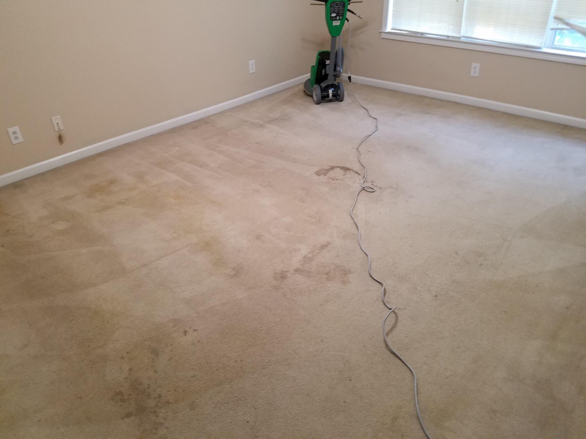 carpet cleaning team and van